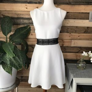 Brand New Alice and Olivia Little Dress